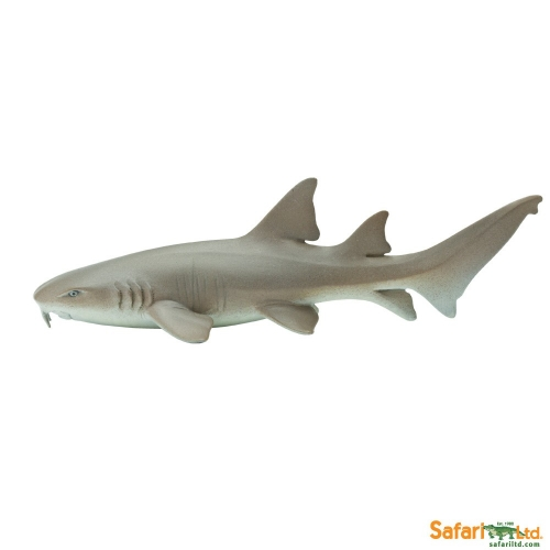 Safari Ltd Nurse Shark