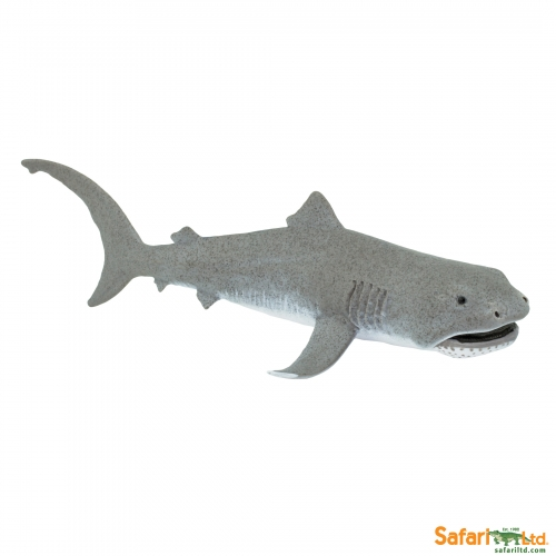 Safari Ltd Megamouth Shark