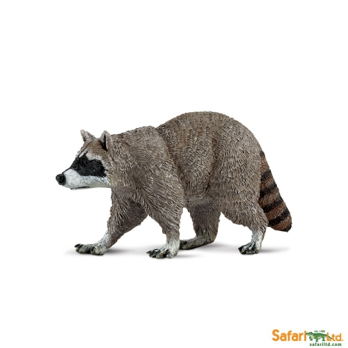 Safari Ltd Racoon