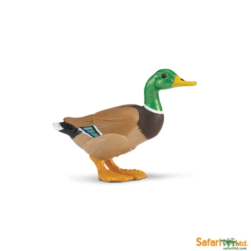 Safari Ltd Duck
