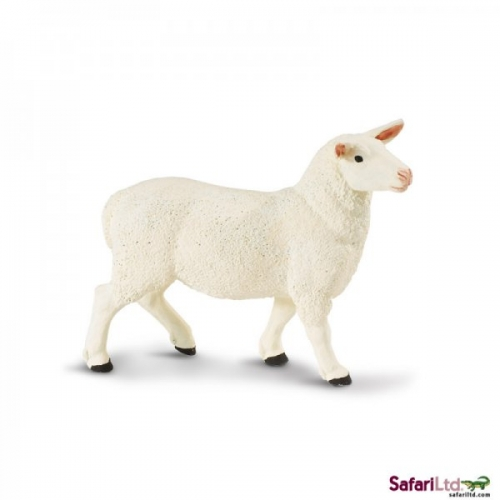 Safari Ltd Ewe