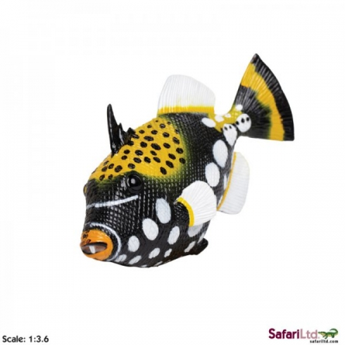 Safari Ltd Trigger Fish