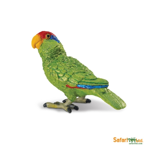 Safari Ltd Green Cheeked Amazon Parrot