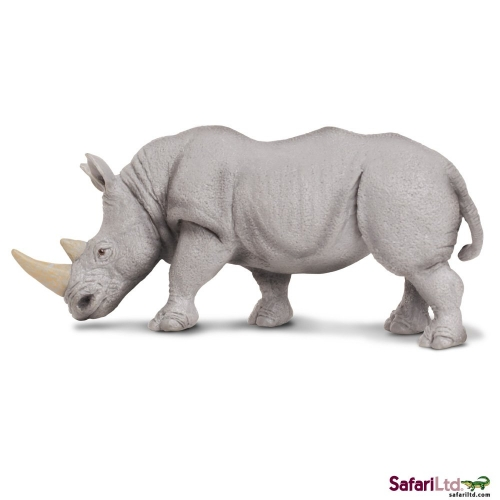Safari Ltd White Rhino