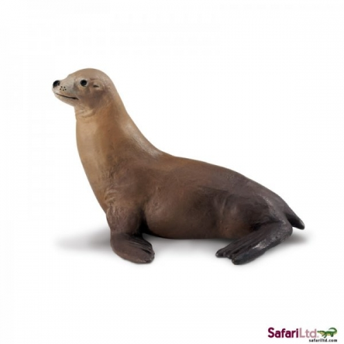 Safari Ltd Sea Lion