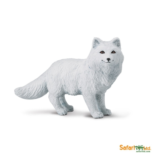 Safari Ltd Arctic Fox