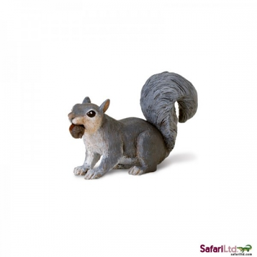 Safari Ltd Grey Squirrel