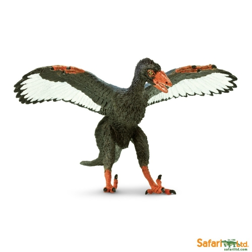 Safari Ltd Archaeopteryx
