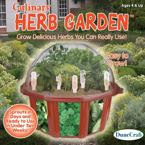 DuneCraft Culinary Herb Garden