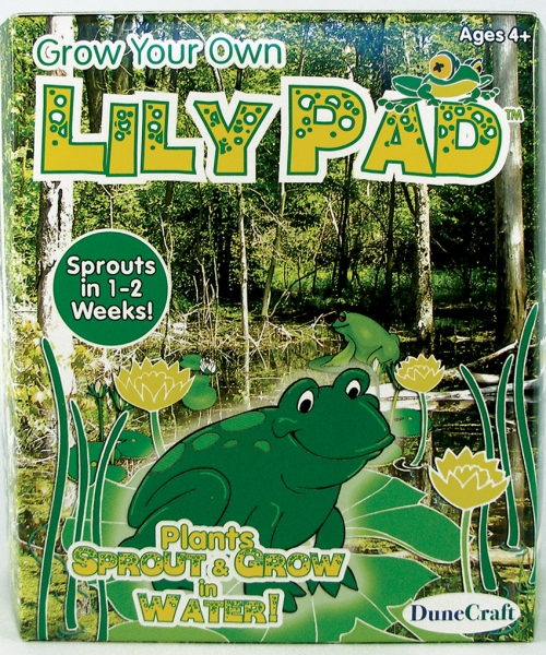 DuneCraft Grow Your Own Lily Pad