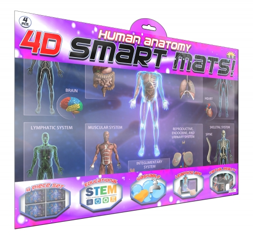 Smart Mat - Human Anatomy