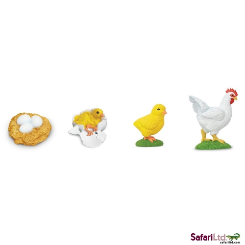 Safari Ltd Life Cycle of a Chicken Bulk Bag