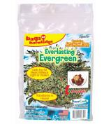 DuneCraft Bags of Knowledge Everlasting Evergreen